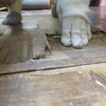 施工前 手で軽く押しただけでわかるくらい床がふかふかめこめこな状態です